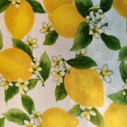 Vinyldug med citroner